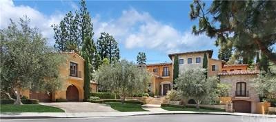 Newport Beach Single Family Home For Sale: 17 Cherry Hills Lane