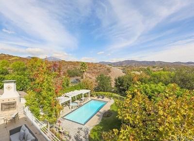 Coto de Caza CA Single Family Home For Sale: $2,095,000