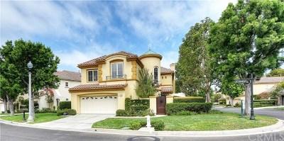 Newport Coast Single Family Home For Sale: 1 Saint Laurent