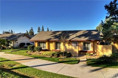 Laguna Hills Condo/Townhouse For Sale: 23002 Caminito Brisa #203