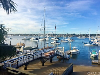 Balboa Peninsula Point (Blpp) Rental For Rent: 1711 E Bay Avenue