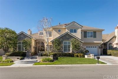 Coto de Caza Single Family Home For Sale: 11 Augusta