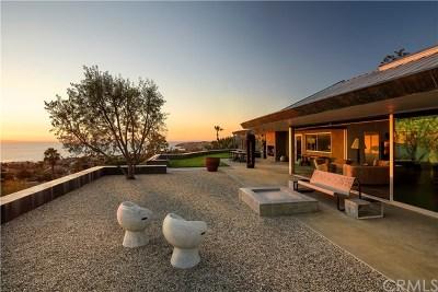 Laguna Beach Single Family Home For Sale: 1179 Temple Hills Drive