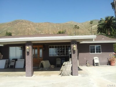 Norco Single Family Home For Sale: 277 Mount Shasta Drive