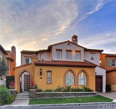 Newport Coast Single Family Home For Sale: 39 Marisol