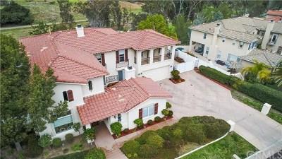 Murrieta Single Family Home For Sale: 42950 Joshua Tree Court