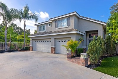 Aliso Viejo Single Family Home For Sale: 12 Peacock Court