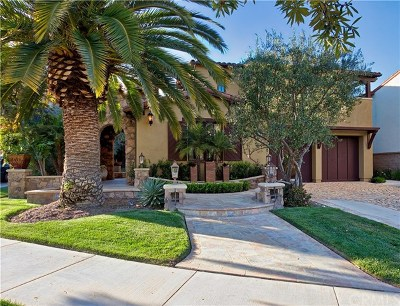 Newport Coast Single Family Home For Sale: 5 Wayside