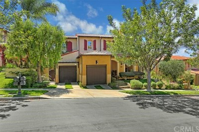Newport Coast Single Family Home For Sale: 20 Tesoro
