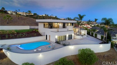 San Clemente Single Family Home For Sale: 112 Via Mimosa
