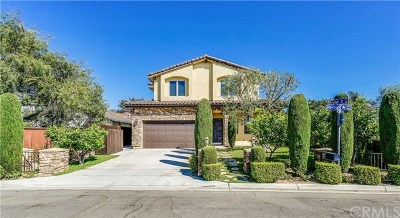 Costa Mesa Single Family Home For Sale: 1968 Raymond Avenue