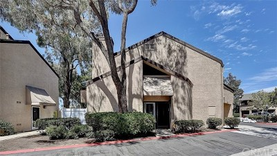 Costa Mesa Single Family Home For Sale: 923 Van Ness Court