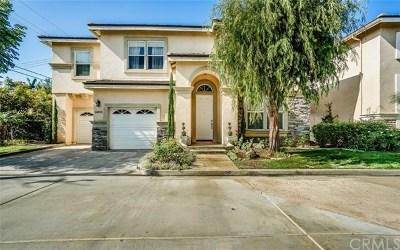 Costa Mesa Single Family Home For Sale: 2450 Elden Avenue #E