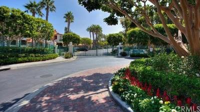 Newport Beach Rental For Rent: 334 Villa Point Drive Drive
