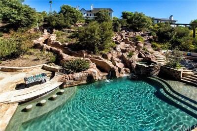 Laguna Hills Single Family Home For Sale: 25152 Anvil Circle