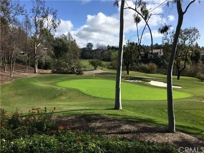 Newport Beach Rental For Rent: 17 Sea Island Drive