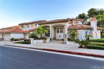 Newport Beach Single Family Home For Sale: 32 Canyon Fairway Drive