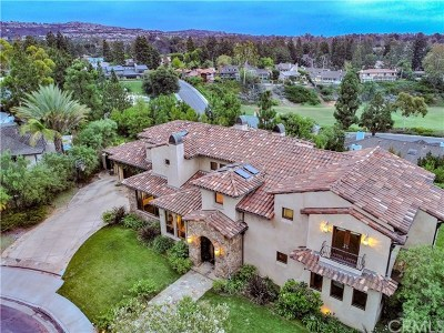 Newport Beach Single Family Home For Sale: 46 Braeburn Lane