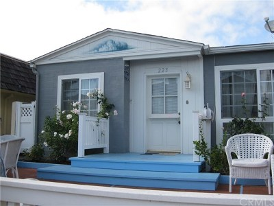 Rental For Rent: 223 Heliotrope Avenue