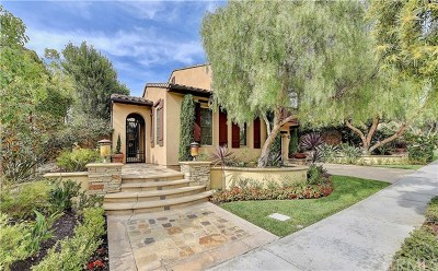 San Juan Capistrano Single Family Home For Sale: 26621 Via La Jolla
