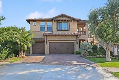 Dana Point  Single Family Home For Sale: 34441 Via Verde