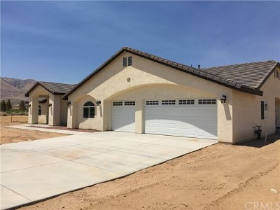 Lucerne Valley Single Family Home For Sale: 11144 High Road