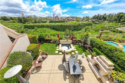 Newport Beach Single Family Home For Sale: 26 Peppertree