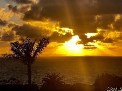 Laguna Beach CA Single Family Home For Sale: $1,525,000