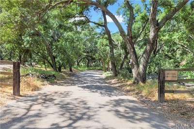 Orange County Residential Lots & Land For Sale: 19411 Live Oak Canyon Road