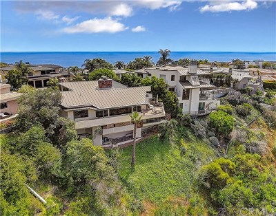 Laguna Beach Single Family Home For Sale: 1335 Skyline Drive