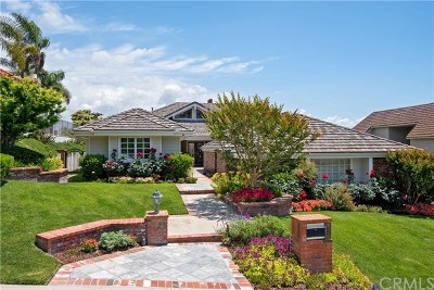 San Juan Capistrano Single Family Home For Sale: 30002 Hillside Terrace