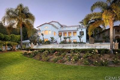 San Juan Capistrano Single Family Home For Sale: 31555 Peppertree Bend