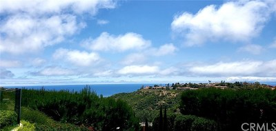 Newport Coast CA Rental For Rent: $5,699