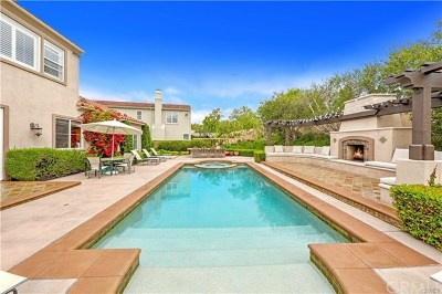 Orange County Single Family Home For Sale: 20 Regents