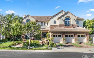 Newport Beach Single Family Home For Sale: 6 Oak Tree Drive