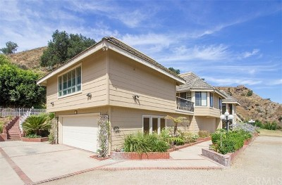 Orange Single Family Home For Auction: 7729 Santiago Canyon Road