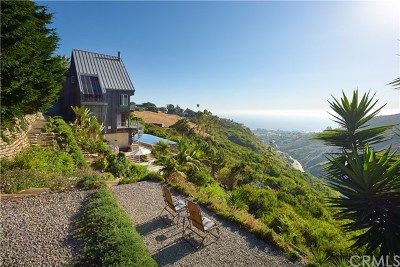 Laguna Beach CA Single Family Home For Sale: $8,295,000