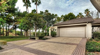 Newport Beach Rental For Rent: 1 Sea Cove Lane