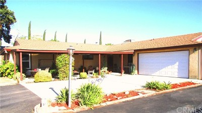 Paso Robles Single Family Home For Sale: 7265 Iverson Place