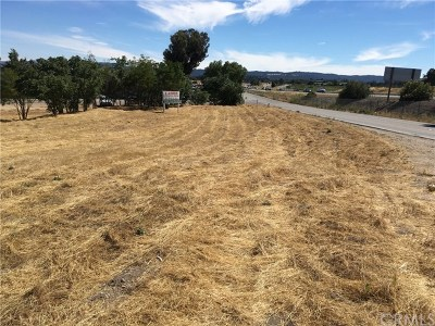 San Luis Obispo County Commercial For Sale: Ramada Drive