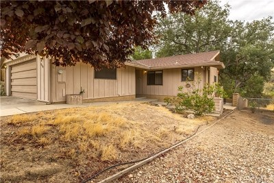 Paso Robles Single Family Home For Sale: 2798 Black Horse Lane