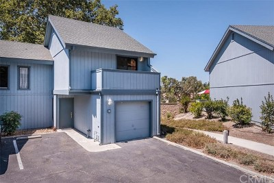 San Luis Obispo County Single Family Home For Sale: 19 Quail Ridge Drive