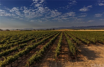 Monterey County Residential Lots & Land For Sale: 68277 Jolon Road
