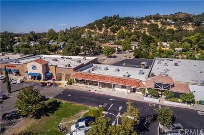 San Luis Obispo County Commercial For Sale: 7111 El Camino Real