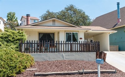 Paso Robles Single Family Home For Sale: 5076 Bluebird Lane