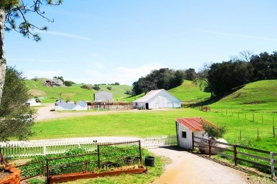 San Luis Obispo County Single Family Home For Sale: 3520 Old Creek Road