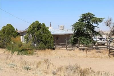 Santa Margarita Single Family Home For Sale: 41755 Circe Trail