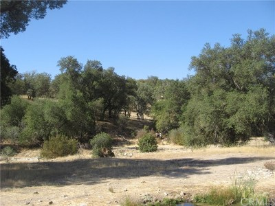 San Luis Obispo County Residential Lots & Land For Sale: 4263 Calf Canyon