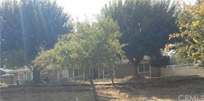 Paso Robles Single Family Home For Sale: 6313 Windmill Place
