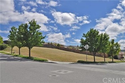 Paso Robles Residential Lots & Land For Sale: 680 Red Cloud Road